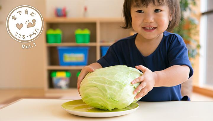 じつは栄養満点!<br>子どものご飯に取り入れたいキャベツのいろいろ