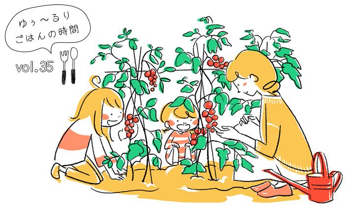 野菜を育ててみる