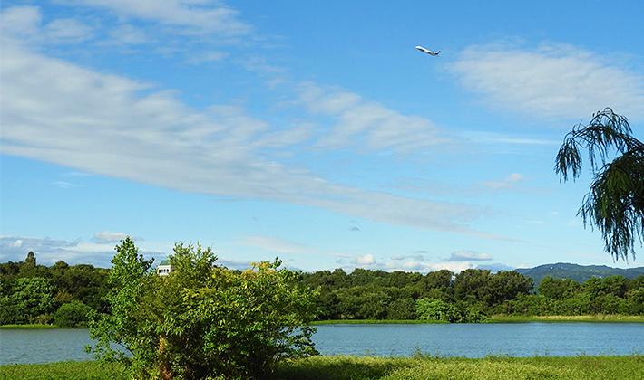 空には飛行機!池には渡り鳥!日本列島の形をした島もある!兵庫県伊丹市昆陽池(こやいけ)公園